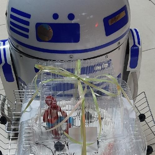 Квест «Спасти R2D2»